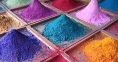 Image result for animales con colores raros