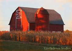Grrrrreat barn pin with the setting sun light on the barn!!!! The corn is as high as an elephant's eye......so must be summer time!!