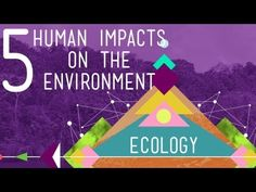 5 HUMAN IMPACTS ON THE ENVIRONMENT: Hank gives the run down on the top five ways humans are negatively impacting the environment and having detrimental effects on the valuable ecosystem services which a healthy biosphere provides.  10:38 minutes