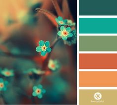 50 Orange and Blue Decor Inspiration - Blue is opposite orange on the color wheel, therefore its a best color to use whenever you desire a contrasting appearance. The color blue has a calm. by Joey Colour Pallette, Color Palate, Colour Schemes, Color Combos, Summer Colour Palette, Best Color Combinations, Sunset Color Palette, Nature Color Palette, Summer Colors