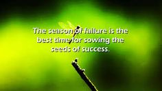 """""""The season of failure is the best time for sowing the seeds of success.""""  ~ Paramahansa Yogananda"""