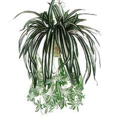 Artificial Silk Orchid Bracketplant Spider Plant >>> For more information, visit http://www.amazon.com/gp/product/B01DSV12AO/?tag=pinhomedecor-20&pbc=220716002901