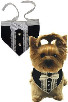 "Dashing & Debonair Tuxedo Bandana Scarf for Dogs in color Black/Ivory Sizes Available: Small and Large ( See Chart Below) Measure around the neck Size Small (8""-14"") Size Large (15""-20"") Features: For"