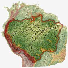Амазонка является самой крупной рекой Южной Америки. Она образуется на территории Перу в результате слияния рек Укаяли и Мараньон, протекает по Амазонской низменности, лежащей на территории Бразилии, и впадает в Атлантический океан. Устье реки представляет собой одну из самых крупных внутренних дельт.