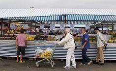 Sem controle, alimentos circulam no país com agrotóxico irregular - 04/10/2015 - Cotidiano - Folha de S.Paulo