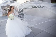 Bride's cathedral length veil blowing in the wind on the rooftop at Malaparte Terrace Toronto Photography, Toronto Wedding Photographer, Wedding Photography, Hayley Paige Bridal, Cathedral Length Veil, Bridal Gowns, Wedding Dresses, Perfect Wedding, Getting Married