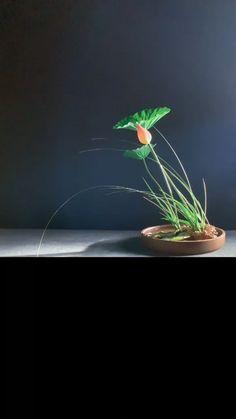 Large Flower Arrangements, Ikebana Flower Arrangement, Ikebana Arrangements, Flower Vases, Deco Floral, Arte Floral, Flower Crafts, Flower Art, Arreglos Ikebana