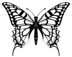 Special Tattoos with Image Butterfly Tattoo Designs Image 4 - Special . - Special Tattoos with Image Butterfly Tattoo Designs Image 4 – Special … – Special Tattoos wit - Butterfly Drawing Images, Butterfly Sketch, Small Butterfly Tattoo, Butterfly Tattoo Designs, Blue Butterfly, Butterfly Design, Mariposa Butterfly, Simple Butterfly, Vintage Butterfly