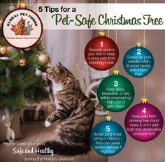 Pin by Cherry Ridge Veterinary Clinic on Christmas Safety Tips for ...