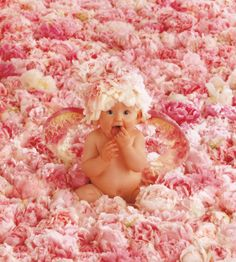 """""""Peony Angel"""" By world known photographer: Anne Geddes"""