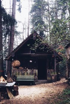 little place in the woods