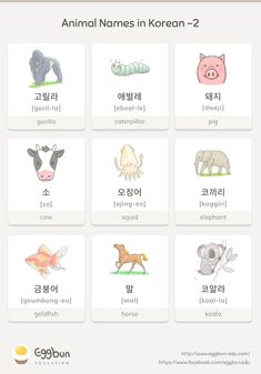 Animal Names in Korean 2 Chat to Learn Korean with Eggbun Learn Basic Korean, How To Speak Korean, Korean Words Learning, Korean Language Learning, Korean English, Learn Hangul, Korean Alphabet, Korean Lessons, Korean Phrases