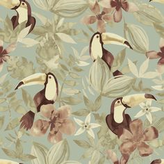 Colours Duck egg Toucan Wallpaper - B&Q for all your home and garden supplies and advice on all the latest DIY trends Diy Wallpaper, Blue Cream, Interior Inspiration, Paint Colors, Rooster, Colours, Floral, Wallpapers, Crafts