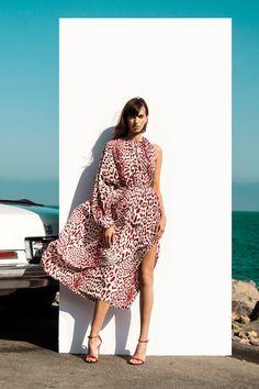 Robert Rodriguez Resort 2018 Fashion Show Collection