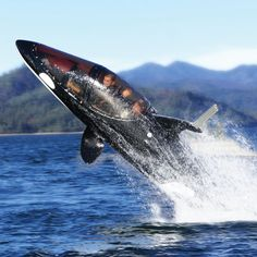 Killer Whale submarine! It's like a jet ski that can go under water.... and jump 16 feet in the air... $100,000