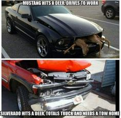 Chevy sucks like a braum's – Automobile KRM Ford Humor, Ford Jokes, Chevy Memes, Truck Memes, Really Funny Memes, Stupid Funny Memes, Funny Cars, Funny Car Quotes, Cool Trucks
