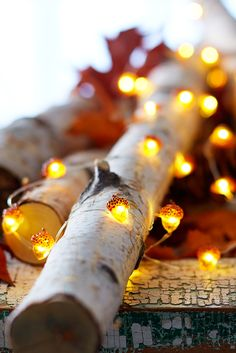 Just in time for fall, our popular Pier 1 Glimmer Strings® are popping up in acorn shapes to gently illuminate your autumn decor. Place them around centerpieces, or string along banisters and trees, indoors and in covered outdoor areas. Our compatible LED Remote Control (sold separately) allows them to be turned on or off at a touch.