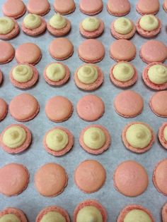 Rose macaron shells in production!