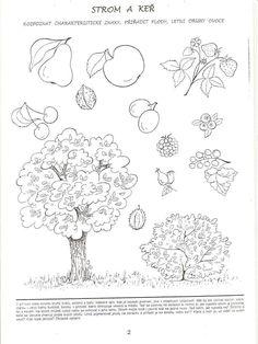 Wat groeit aan de bomen? Wat aan een struik?