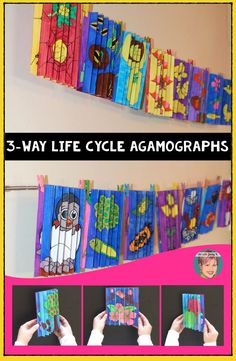A unique life cycle project that your students won't soon forget! These 3-way life cycle agamographs feature 18 different life cycles to help teachers with any life cycle they are teaching - including the butterfly life cycle, frog life cycle, apple life cycle, pumpkin life cycle and much more!