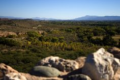 Verde Valley and the Verde River in Central Arizona