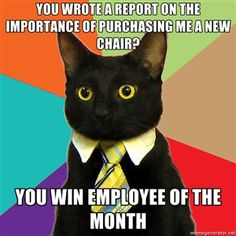 you wrote a report on the importance of purchasing me a new chair? you win employee of the month | Business Cat | Meme Generator