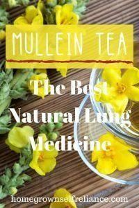 Excellent Natural Home Remedies Detail Are Available On Our