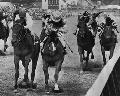 1964 Kentucky Derby Winner NORTHERN DANCER Glossy 8x10 Photo Churchill Downs