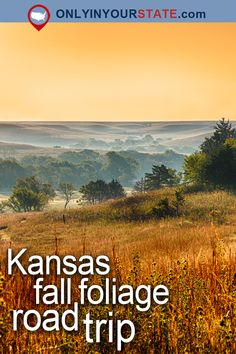Travel | Kansas | Attractions | USA | Fall Foliage | Road Trips | Things To Do | Places To Visit | Bucket List | Autumn | Day Trips | Scenic Drive | Foliage Road Trip | National Preserve | Tallgrass Prairie | State Parks | Outdoor | Adventure | Nature | Small Towns | Landscape | Kansas Road Trip