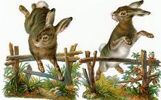 Victorian Scrap Rabbits Jumping Over Fences