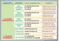 Valorile si functiile sintactice ae numeralelorl - ROTAREXIM S. Kids Education, Roman, Sad, School