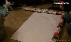 Я получил:Пушистое создание! Какой из тебя новогодний подарочек?