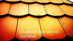 #decartes #denken #ichdenke #sein #philosophie #da sein #existenz #zitat #quote #weissheit