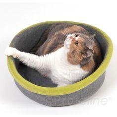 Katzen Filznest