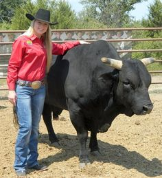 Paige Stout talks about her goals for the 2014 season and her pen of up-and-coming bulls.