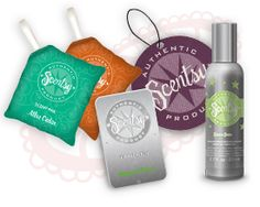 Ashley Braden- Independent Scentsy Consultant : How Scentsy Warmers Work