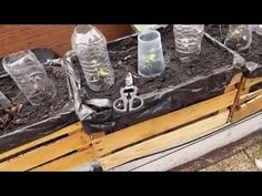 Crea tus Propias Macetas Super Economicas Invernadero Huerto Urbano - YouTube Garden Boxes, Wood Boxes, Projects To Try, Iphone, Ideas Para, Youtube, Earth, Gardens, Pallet Patio