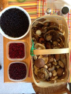 Mushrooms, cranberries & crow berries from Old Woman's Mnt. Kodiak, AK