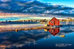 Tilting, Fogo Island Newfoundland Canada, Newfoundland And Labrador, Newfoundland Icebergs, Visit Canada, O Canada, Canada Travel, Places To Travel, Places To Go, Atlantic Canada