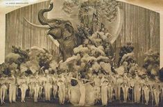 A collection of beautiful Ziegfeld Follies and Folies Bergère costumes from the 1920s-30s