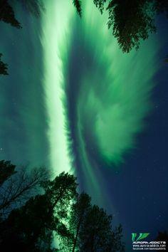 Auroras Taken by Aurora Addicts on April 11, 2014 @ Near Boden, Sweden