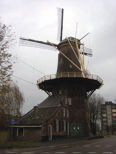 Real Holland ve městě Delft - Delft, Jižní Holandsko