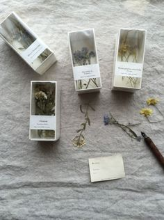 Tea Packaging, Packaging Design, Flower Crafts, Flower Art, Nature Journal, How To Preserve Flowers, Nature Crafts, Dried Flowers, Diy Gifts