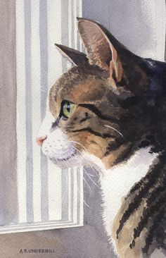 cat watercolour by Underhill