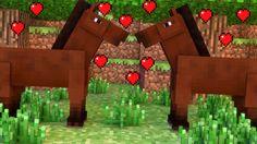 Multiplicando os cavalos - Fazenda #49