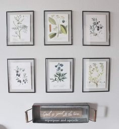 This is a DIY post about how I created six framed botanical prints for under twenty dollars. I've also included a set of six free botanical printables (downloads) and the links to the frames so you can create them too!