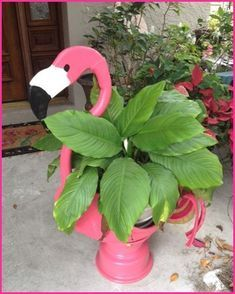 DIY Pink Flamingo Home And Yard Decor - Just Pink About It - Pink Flamingo DIY home and yard decor ideas and inspiration. Cheer up your home with Pink Flamingo decor with these fun DIY flamingo projects. Find inspiration for fun flamingo decor. Flamingo Craft, Flamingo Garden, Flamingo Gifts, Flamingo Decor, Pink Flamingos, Flamingo Bird, Yard Flamingos, Flamingo Outfit, Flamingo Pool