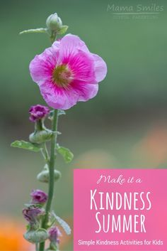Help kids put kindness first with these kindness activities for kids. I love the fun kindness elf activities in this post! Help kids put kindness first with these kindness activities for kids. I love the fun kindness elf activities in this post! Educational Activities For Kids, Summer Activities For Kids, Kids Learning, Children Activities, Happy Mom, Happy Kids, Kindness For Kids, Kindness Activities, Teaching Kindness
