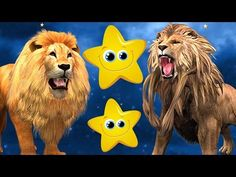 Twinkle Twinkle Little Star Nursery Rhymes   Lion Nursery Rhymes   Kids Nursery Rhymes Songs - YouTube