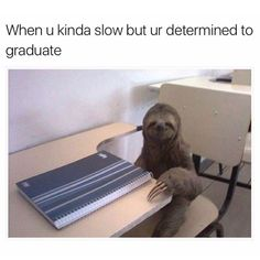 When you slow but you're determined to graduate - http://absurdpics.com/funny/when-you-slow-but-youre-determined-to-graduate/